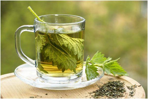 крапивный чай на фоне боке