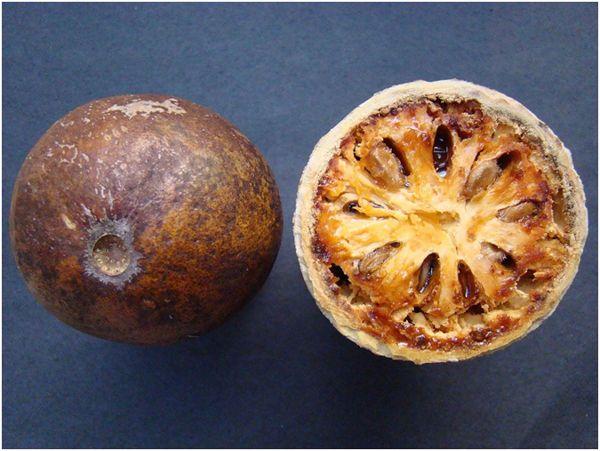 каменное яблоко