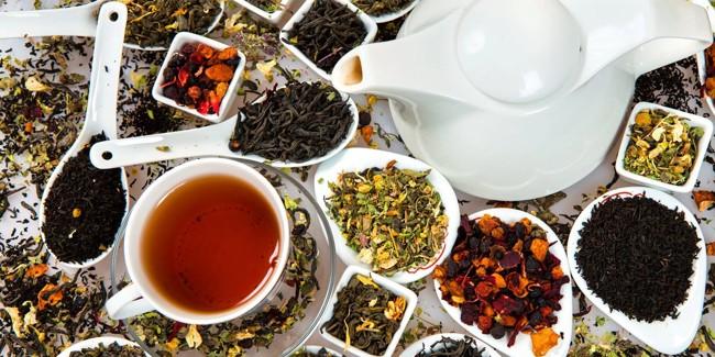разнообразие алтайского чая