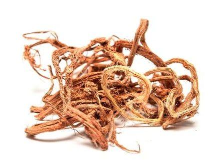 сухой корень копеечника
