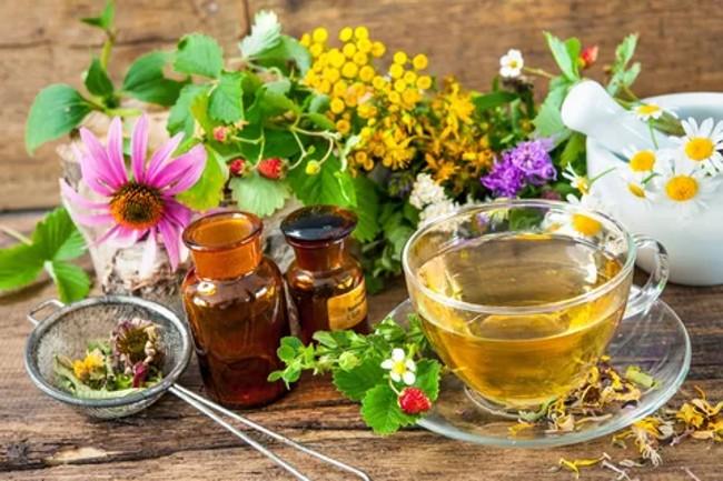 травы и чай в чашке