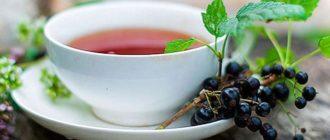 чашка чая из смородины
